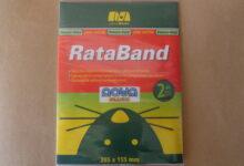 Rataband